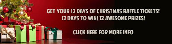 12 Days Of Christmas Raffle